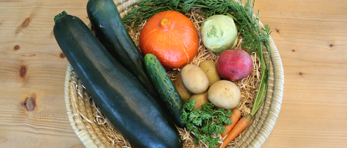 Saisonales BIO-Gemüse